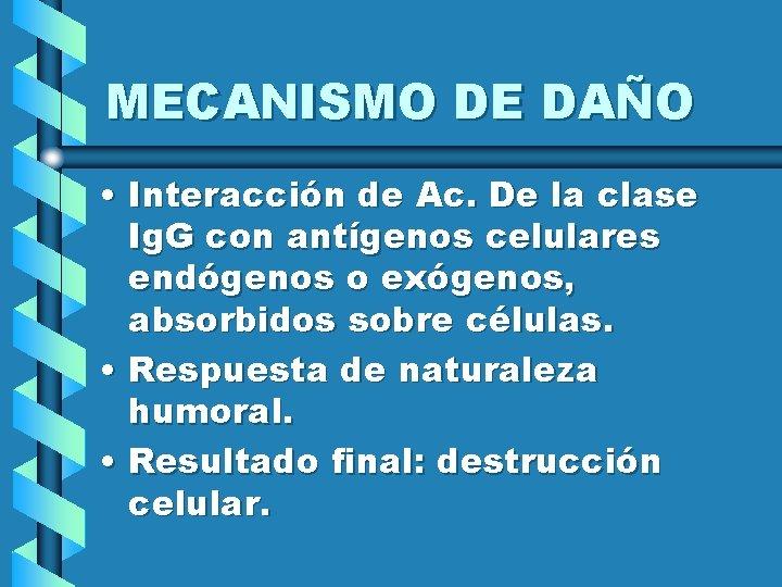 MECANISMO DE DAÑO • Interacción de Ac. De la clase Ig. G con antígenos