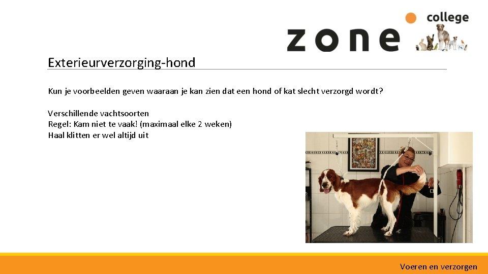 Exterieurverzorging-hond Kun je voorbeelden geven waaraan je kan zien dat een hond of kat