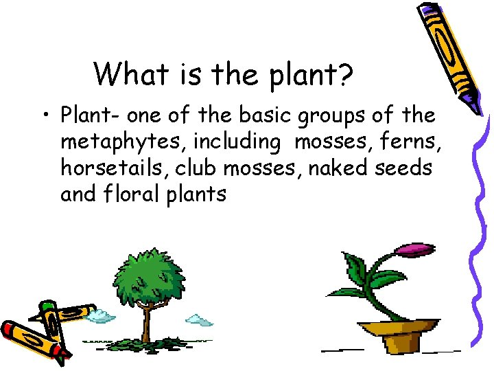 What is the plant? • Plant- one of the basic groups of the metaphytes,