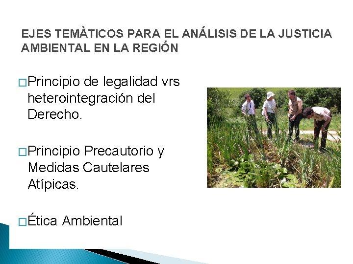 EJES TEMÀTICOS PARA EL ANÁLISIS DE LA JUSTICIA AMBIENTAL EN LA REGIÓN � Principio