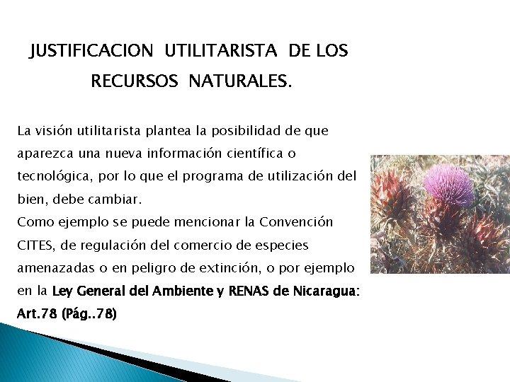 JUSTIFICACION UTILITARISTA DE LOS RECURSOS NATURALES. La visión utilitarista plantea la posibilidad de que