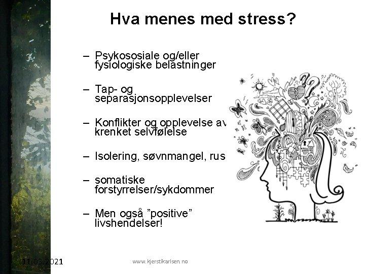 Hva menes med stress? – Psykososiale og/eller fysiologiske belastninger – Tap- og separasjonsopplevelser –