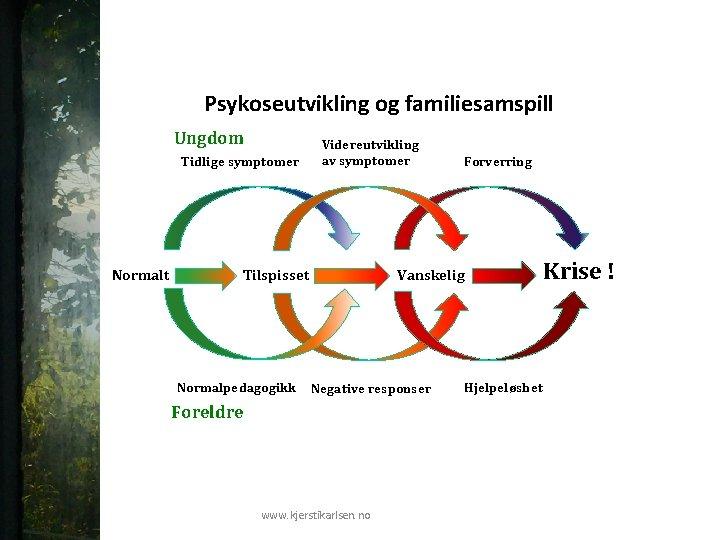 Psykoseutvikling og familiesamspill Ungdom Tidlige symptomer Normalt Videreutvikling av symptomer Tilspisset Normalpedagogikk Forverring Vanskelig
