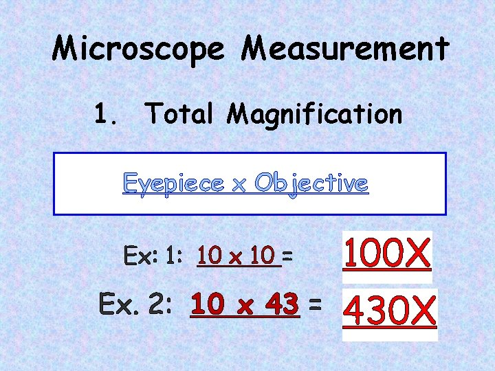 Microscope Measurement 1. Total Magnification Eyepiece x Objective Ex: 1: 10 x 10 =