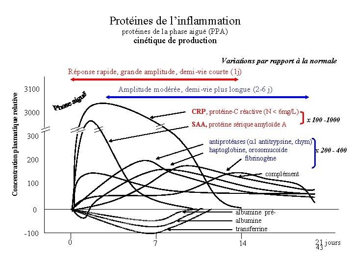 Protéines de l'inflammation protéines de la phase aiguë (PPA) cinétique de production Concentration plasmatique