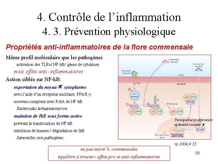 4. Contrôle de l'inflammation 4. 3. Prévention physiologique Propriétés anti-inflammatoires de la flore commensale