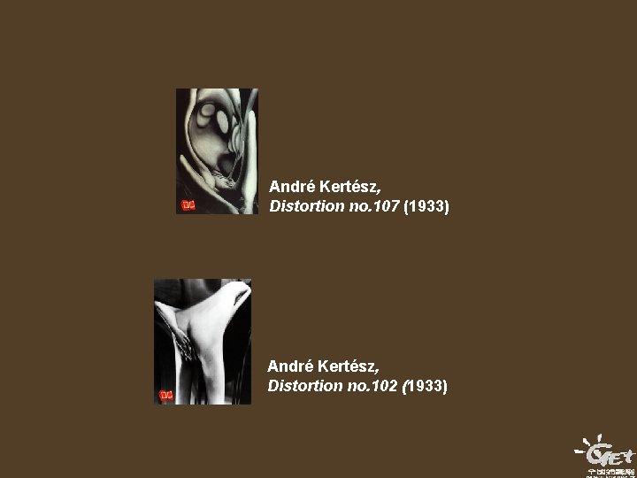 André Kertész, Distortion no. 107 (1933) André Kertész, Distortion no. 102 (1933)