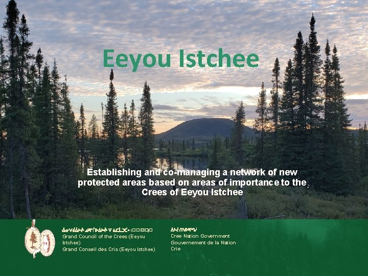 Eeyou Istchee Establishing and co-managing a network of new protected areas based on areas