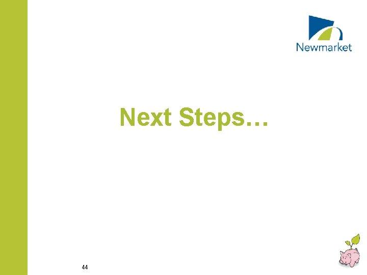 Next Steps… 44