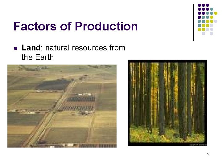 Factors of Production l Land: natural resources from the Earth 5