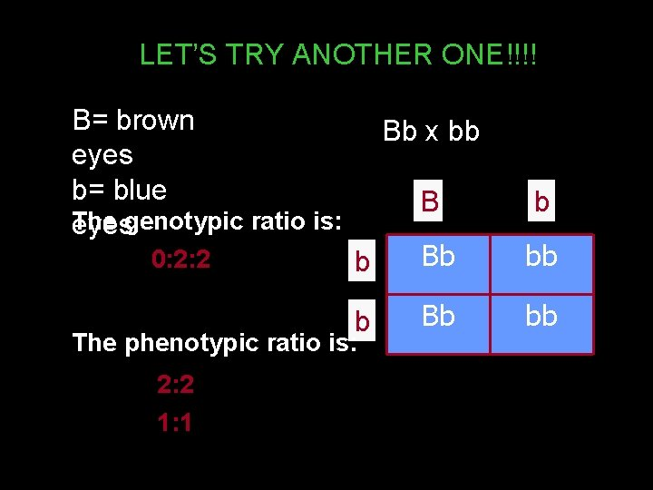 LET'S TRY ANOTHER ONE!!!! B= brown eyes b= blue The eyesgenotypic ratio is: 0: