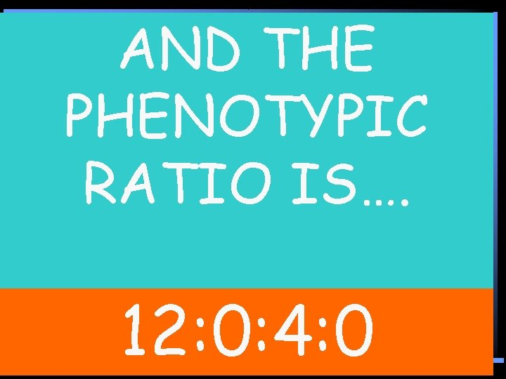 AND THE Needs an E and H PHENOTYPIC Needs an E and 0/16 RATIO