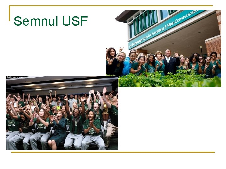 Semnul USF