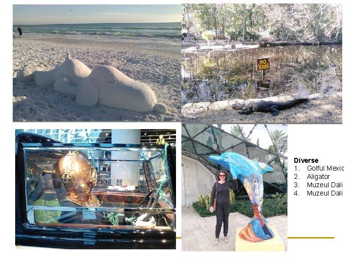 Diverse 1. Golful Mexic 2. Aligator 3. Muzeul Dali 4. Muzeul Dali