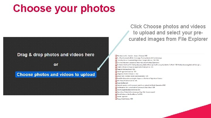 Choose your photos Click Choose photos and videos to upload and select your precurated