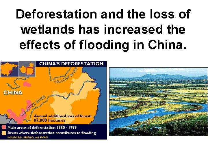 Deforestation and the loss of wetlands has increased the effects of flooding in China.