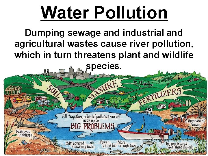 Water Pollution Dumping sewage and industrial and agricultural wastes cause river pollution, which in