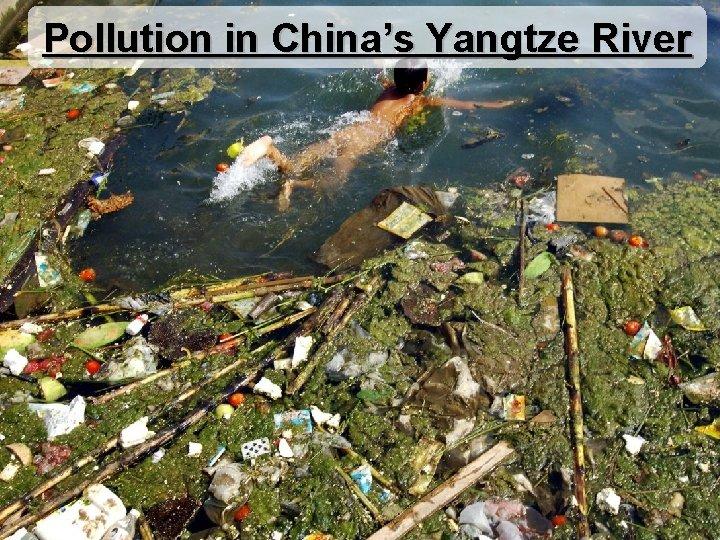 Pollution in China's Yangtze River