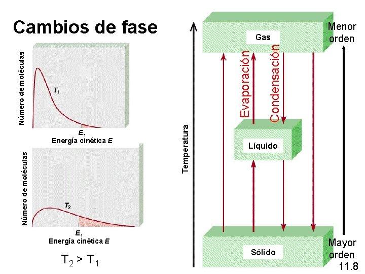 Cambios de fase Número de moléculas E 1 Energía cinética E Temperatura Condensación Número