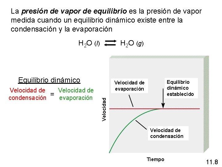 La presión de vapor de equilibrio es la presión de vapor medida cuando un
