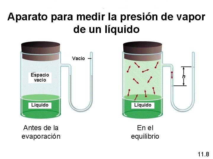Aparato para medir la presión de vapor de un líquido Vacío Espacio vacío Líquido
