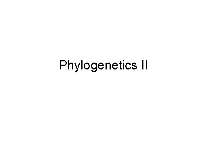 Phylogenetics II