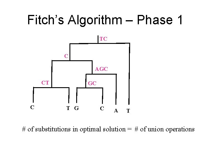 Fitch's Algorithm – Phase 1 TC C AGC CT C GC T G C