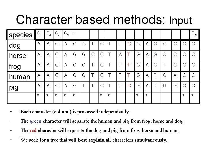Character based methods: Input species C 1 C 2 C 3 C 4 …