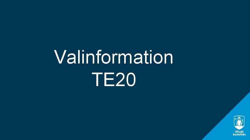 Valinformation TE 20