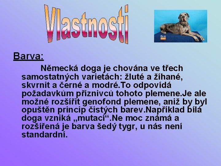 Barva: Německá doga je chována ve třech samostatných varietách: žluté a žíhané, skvrnit a