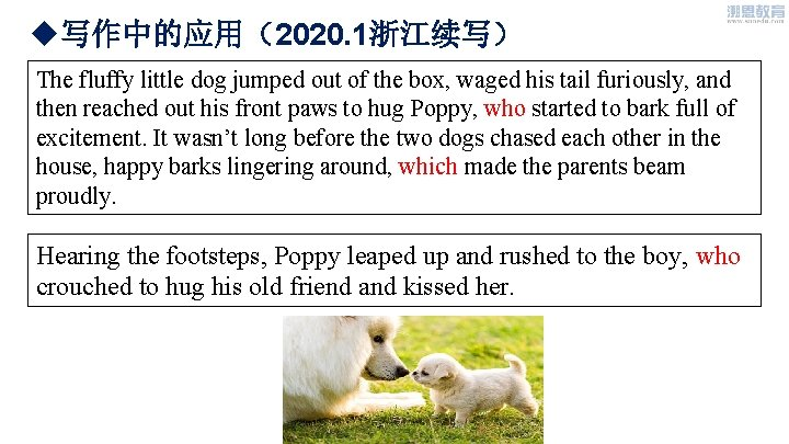 u写作中的应用(2020. 1浙江续写) The fluffy little dog jumped out of the box, waged his tail