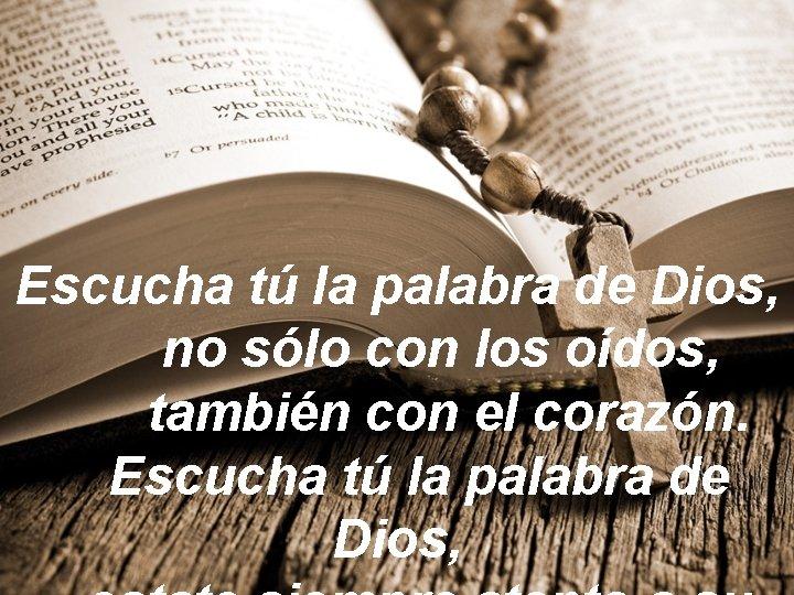 Escucha tú la palabra de Dios, no sólo con los oídos, también con el