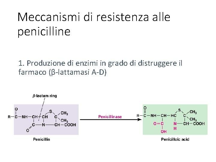 Meccanismi di resistenza alle penicilline 1. Produzione di enzimi in grado di distruggere il