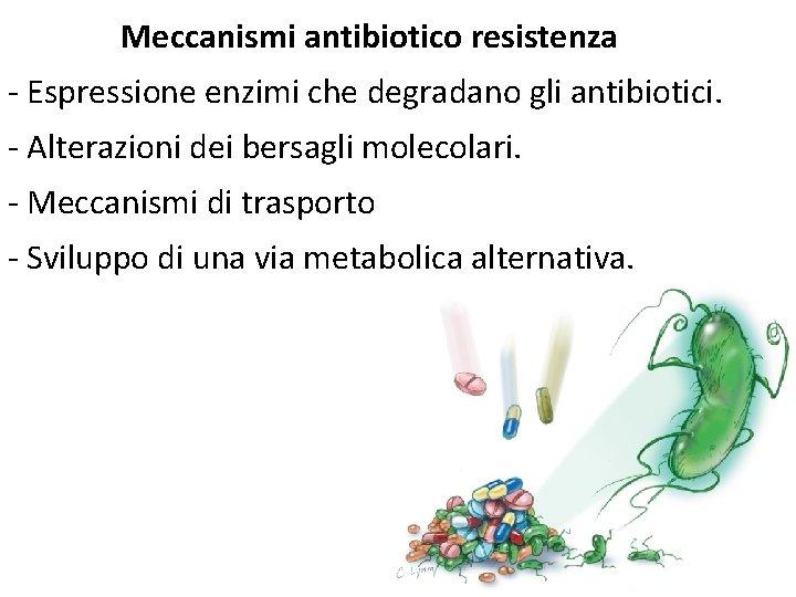 Meccanismi antibiotico resistenza - Espressione enzimi che degradano gli antibiotici. - Alterazioni dei bersagli