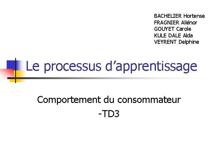 BACHELIER Hortense FRAGNIER Aliénor GOUYET Carole KULE DALE Alda VEYRENT Delphine Le processus d'apprentissage