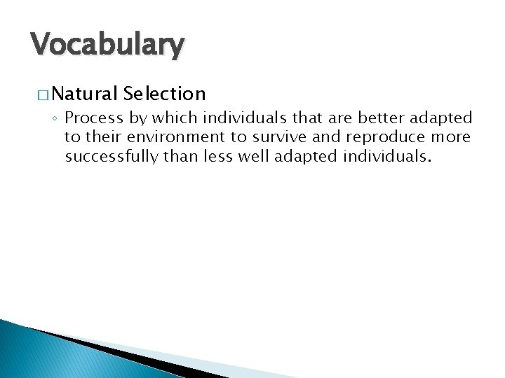 Vocabulary � Natural Selection ◦ Process by which individuals that are better adapted to