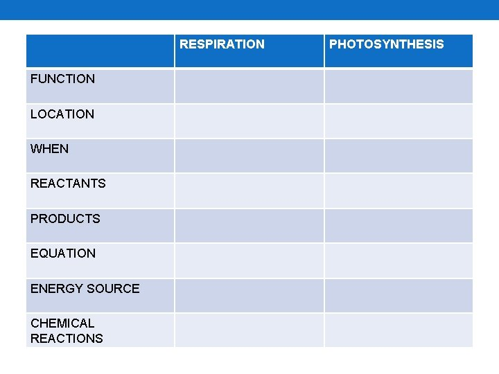 RESPIRATION FUNCTION LOCATION WHEN REACTANTS PRODUCTS EQUATION ENERGY SOURCE CHEMICAL REACTIONS PHOTOSYNTHESIS