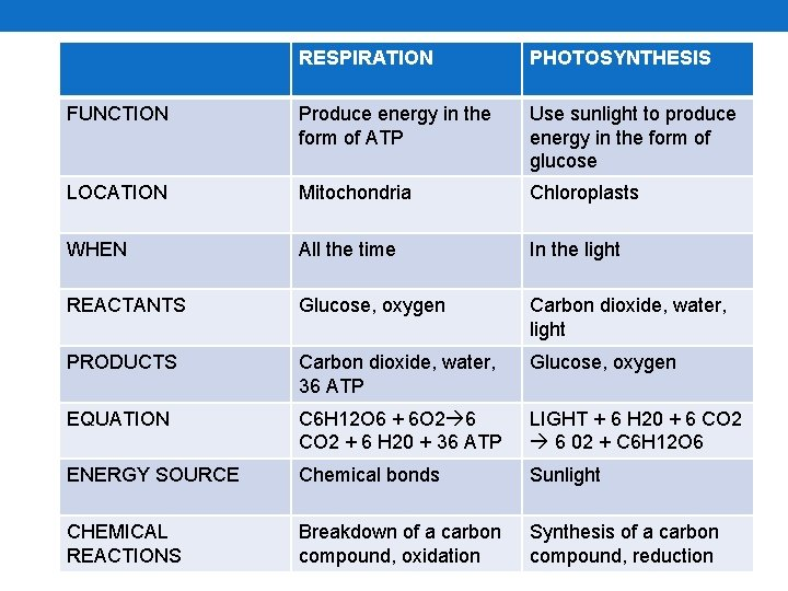 RESPIRATION PHOTOSYNTHESIS FUNCTION Produce energy in the form of ATP Use sunlight to produce