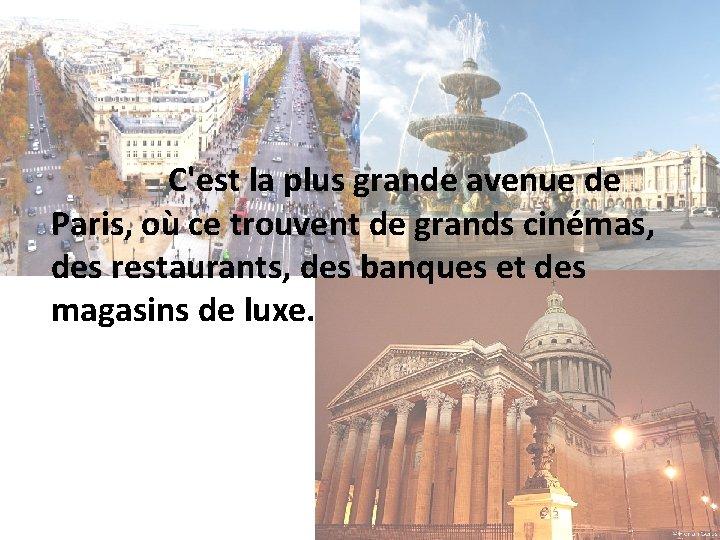 C'est la plus grande avenue de Paris, où ce trouvent de grands cinémas, des