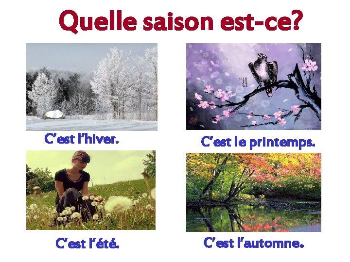 Quelle saison est-ce? C'est l'hiver. C'est l'été. C'est le printemps. C'est l'automne.