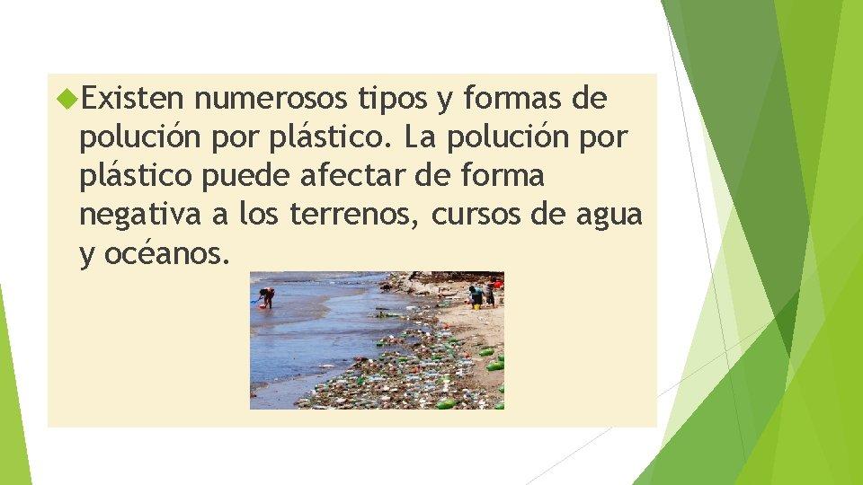 Existen numerosos tipos y formas de polución por plástico. La polución por plástico