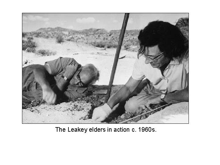 The Leakey elders in action c. 1960 s.