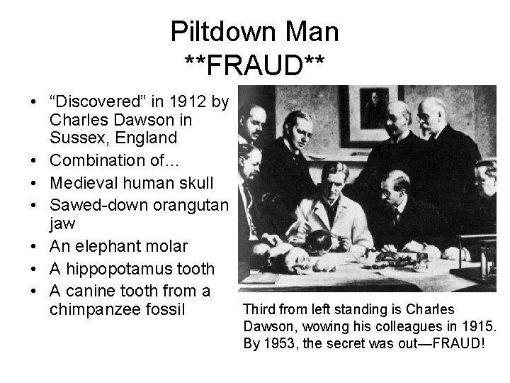 """Piltdown Man **FRAUD** • """"Discovered"""" in 1912 by Charles Dawson in Sussex, England •"""