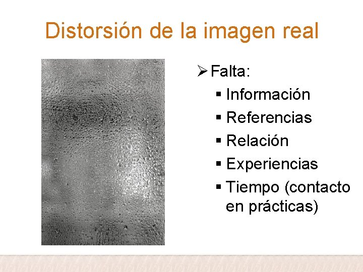Distorsión de la imagen real Ø Falta: § Información § Referencias § Relación §