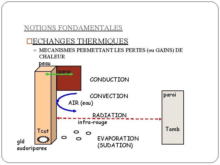 NOTIONS FONDAMENTALES �ECHANGES THERMIQUES = MECANISMES PERMETTANT LES PERTES (ou GAINS) DE CHALEUR peau