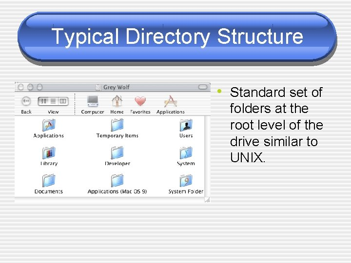 Typical Directory Structure • Standard set of folders at the root level of the