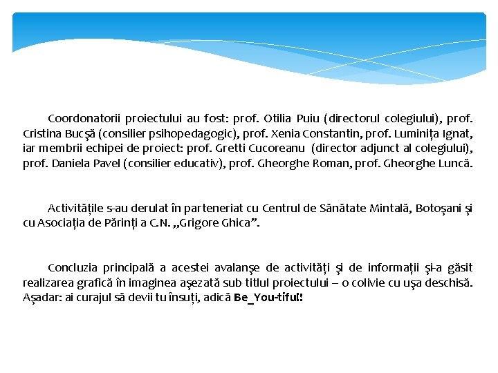 Coordonatorii proiectului au fost: prof. Otilia Puiu (directorul colegiului), prof. Cristina Bucşă (consilier psihopedagogic),
