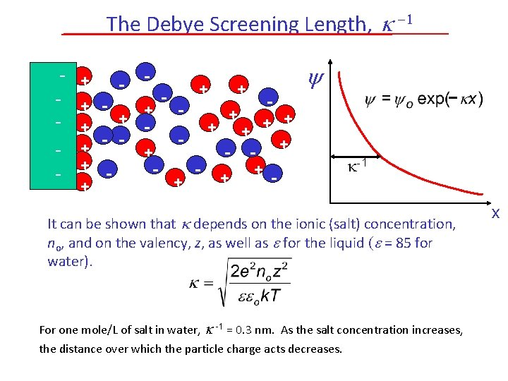 The Debye Screening Length, -1 - + - - + + + - +