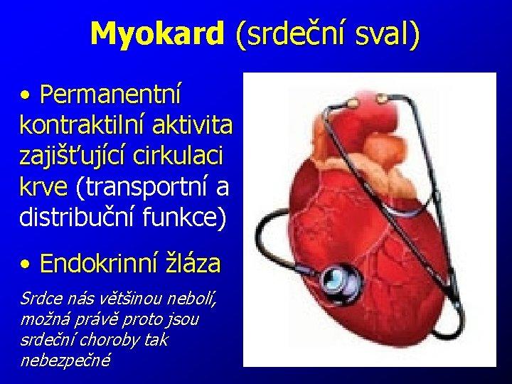 Myokard (srdeční sval) • Permanentní kontraktilní aktivita zajišťující cirkulaci krve (transportní a distribuční funkce)