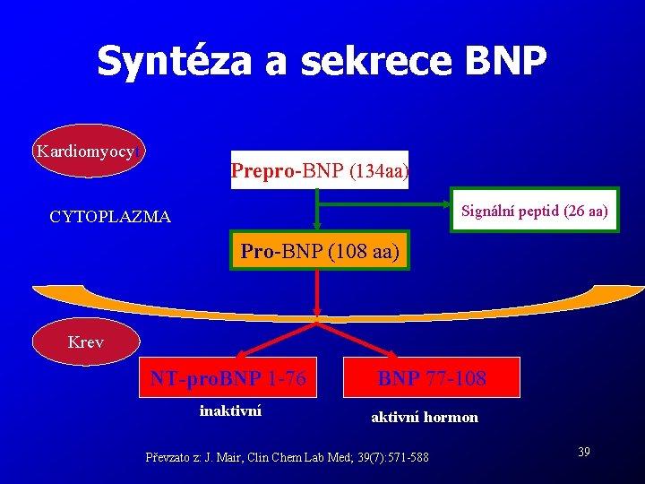 Syntéza a sekrece BNP Kardiomyocyt Prepro-BNP (134 aa) Signální peptid (26 aa) CYTOPLAZMA Pro-BNP